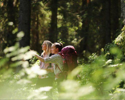 https://dmo.visitkarelia.fi/files/vk-harri-tarvainen-forestrip2-jpg-e1629799043172.jpg